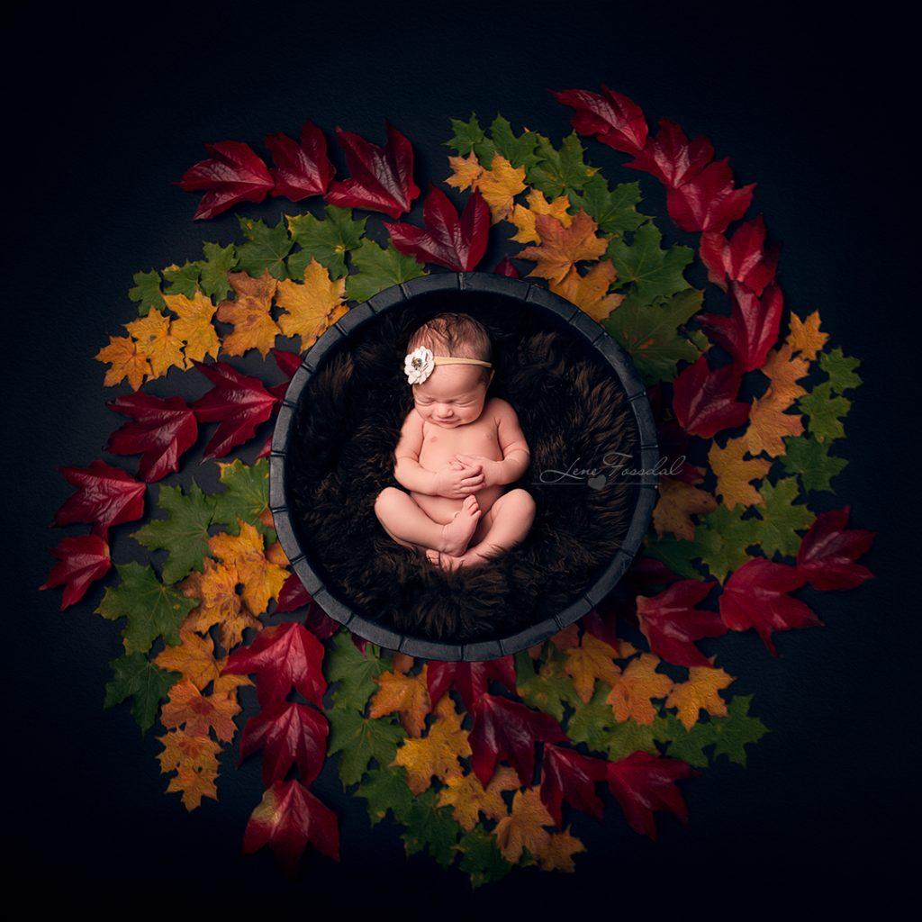 En modellbaby som ligger i en kurv, omringet av høstblader.